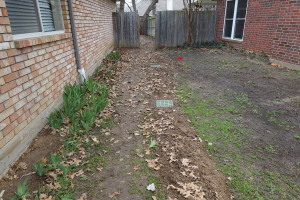 area drain installation in Dallas